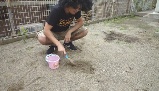 【特集】いい大人が本気で「泥だんご」を作って遊んでみた!!